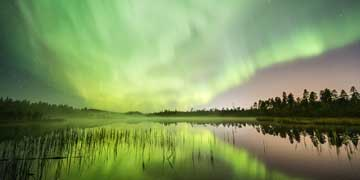 Green Northern lights Rovaniemi Autumn Photo Alexander Kuznetsov