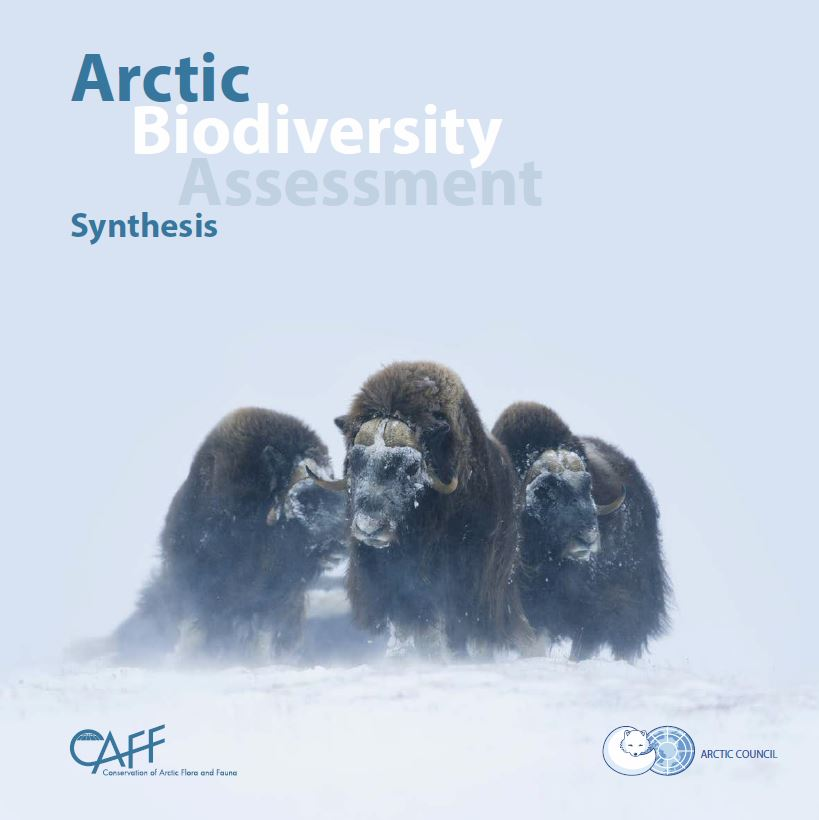 Download the Arctic Biodiversity Assessment: Synthesis