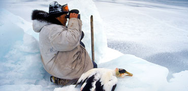 Inuit hunter with eider. Photo: Grant Gilchrist
