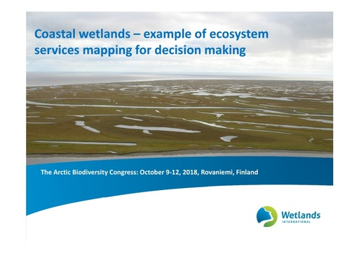 Coastal wetlands – example of ecosystem services mapping for decision making: Liudmila Sergienko