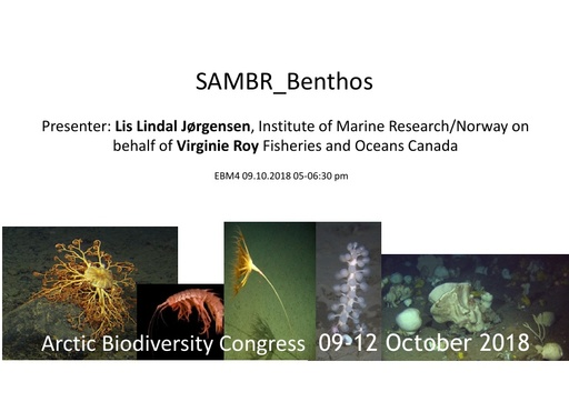 Benthos key findings and information gaps: Lis Lindal Jorgensen