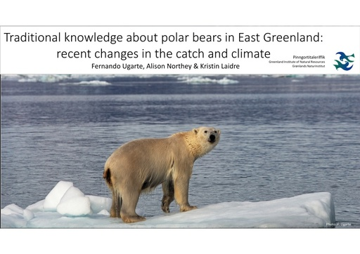 Traditional knowledge about polar bears in East Greenland: recent changes in the catch and climate: Fernando Ugarte
