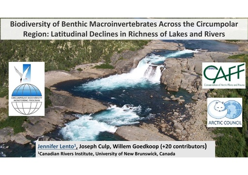 Biodiversity of benthic macroinvertebrates across the circumpolar region: evidence of latitudinal declines in richness in Arctic rivers and lakes: Jennifer Lento