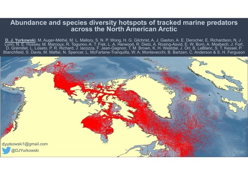 Abundance and species diversity hotspots of tracked marine predators across the North American Arctic: David Yurkowski