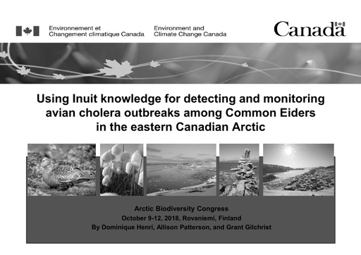 Using Inuit traditional ecological knowledge for detecting and monitoring avian cholera among common eiders in the eastern Canadian Arctic: Allison Patterson