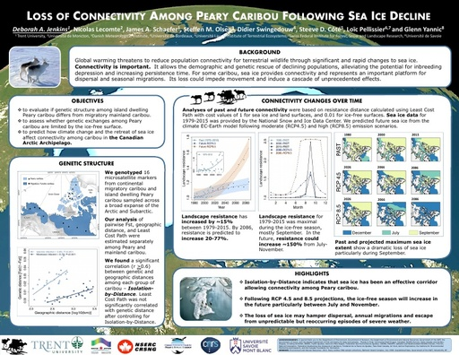 Loss of connectivity among Peary caribou following sea ice decline