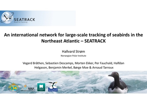 An international network for large-scale tracking of seabirds in the Northeast Atlantic – SEATRACK: Hallvard Strøm